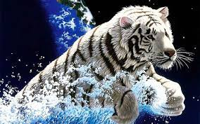3D Tiger for Android - APK Download