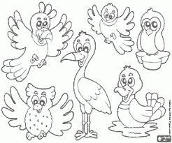Kleurplaten Vogel Kleurplaat