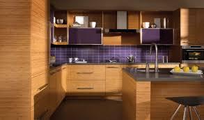 Bamboo Cabinets Kitchen Kitchen Bamboo Kitchen Cabinets With Pinterest Kitchen Cabinets
