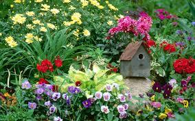 free flower garden wallpapers. Exellent Garden Flower Garden Wallpapers Best And Free A