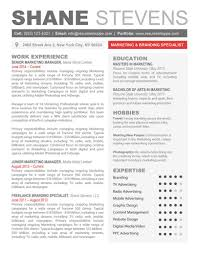 Template Professional Resume Template Word Free Online The