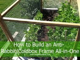 vegetables garden fence ideas for protection. Vegetable Garden Fence Chicken Wire Photo - 12 Vegetables Ideas For Protection