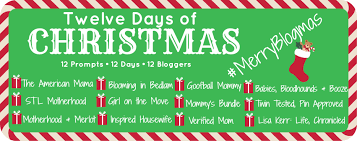 Best 25 12 Days Ideas On Pinterest  12 Days Of Xmas Days Of The Gifts In 12 Days Of Christmas