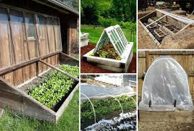 top 10 cold frame tips for fall and winter veggies gardening