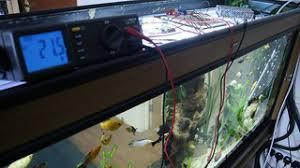 Aquarium Verlichting Wat Je Echt Moet Weten