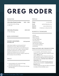 Resume Styles 2017 Best CV Examples 100 to Try Resume Examples 100 10