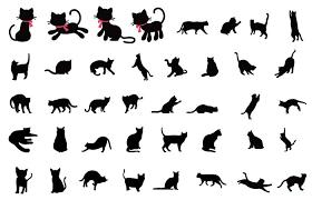 猫ネコの画像 原寸画像検索