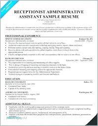 Executive Resume Template Word Executive Resume Template