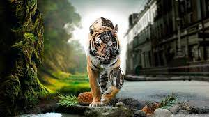 Abstract Tiger HD Wallpapers - Top Free ...