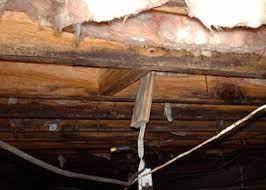 repairing wood damage in a crawl e