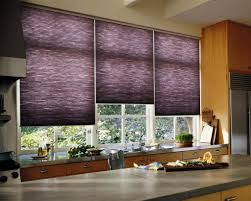 Roman Blinds In Kitchen Kitchen Blinds Helpformycreditcom