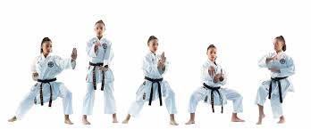 The Levels Of Karate Belts Awma Blog