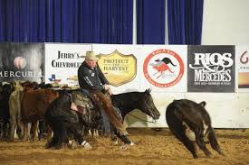 Pierre cutting horse Cat King Cole now world champ, retires to pass it on |  Local News Stories | capjournal.com