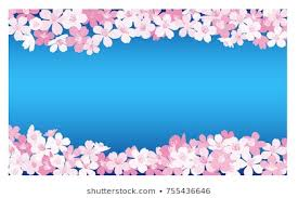 background with vector cherry blossoms anese sakura flowers