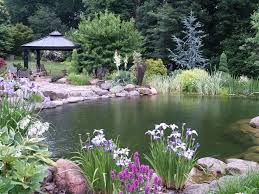Small Picture 125 best ponds images on Pinterest Pond ideas Garden ideas and