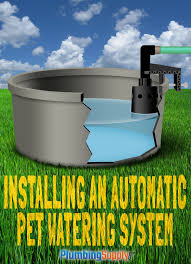 help your furry friends beat the heat with a diy pet watering system that automatically refills