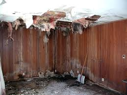 Remove Musty Smell From House Eliminating Musty Odors Other Smells In  Basements Remove Stale Odor House .