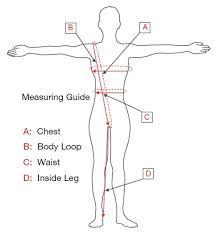 Women S Measurement Chart Body Women Body Measurements Chart Bismi Margarethaydon Com