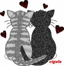 Résultat de recherche d'images pour 'dessin de chaton gif'