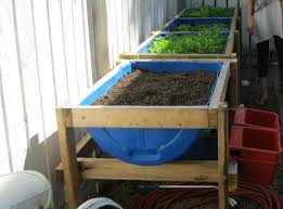 garden projects for 55 gallon barrel drums