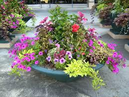 container garden plans. vibrant container garden plans excellent decoration 1000 images about partial shade on pinterest lofty ideasunique plant