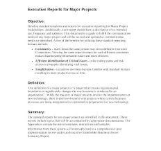 Executive Summary Resume Examples Amazing Executive Summary Report Template Studiorcco