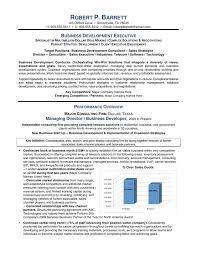 Business Development Executive Resume Template Professional Business