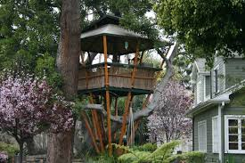 Cool Bamboo Tree House Design