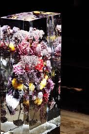 Bouquet De Coquelicotsl L