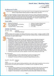 Example For Resume Example Of A Good CV 7