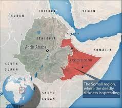 مرض غريب في إثيوبيا يبدأ بالنزيف من الأنف وينتهي بالموت!!