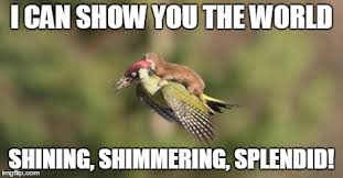 Weasel on woodpecker - Imgflip via Relatably.com