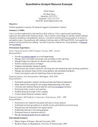 doc 1200540 computer systems analyst job description template cover letter computer system analyst job description computer