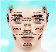 Chinese Facial Reading Chart The Dr Oz Show