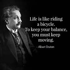 the best funny einstein quotes ideas albert  albert einstein quote agymlife com