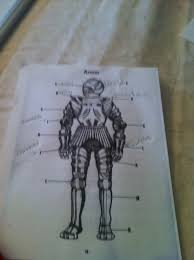 Samurai Vs Knight Venn Diagram True North Our Canadian Homeschool Knights Vs Samurai