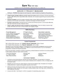 Resume Sap Project Manager Resume Fair On Business Analyst Download
