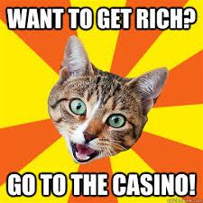 Want To Get Rich? Cat Meme - Cat Planet | Cat Planet via Relatably.com