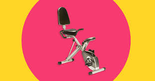 The 8 Best <b>Recumbent Exercise Bikes</b> of 2021