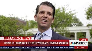 what secret wikileaks don jr communications mean in russia probe