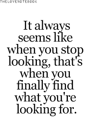 Looking For Love Quotes Beauteous It Always Seems Like When You Stop Looking That's When You Finally