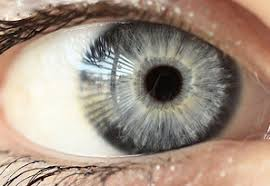 Eye Color Guide The Most Common Eye Colors
