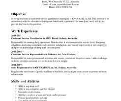 Csr Resume Sample Babysitter Resume