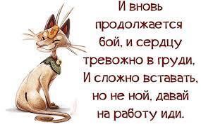 Будет необходимая мобилизация депутатов для результативного голосования, - Ирина Геращенко об отмене е-декларация для активистов - Цензор.НЕТ 5637