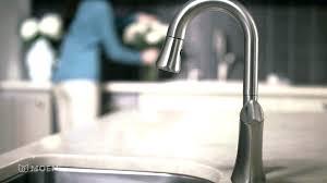 pegasus kitchen faucet kitchen kitchen faucet replacement sprayer cartridge kitchen faucet replacement parts pegasus kitchen