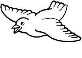 Parrot Coloring Page Cute Bird Coloring Pages Parrot Coloring Page