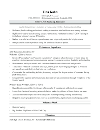 Template Patient Care Plan Template Home Health Aide Resume