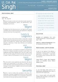 100 Resume Format For Advertising Agency Free Creative