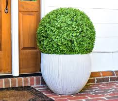 Decorative Boxwood Balls Faux Boxwood Ball 100100 Set Of 100 Home Decorative Accents 22