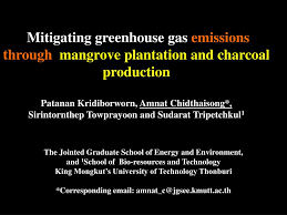 ppt mitigating greenhouse gas emissions through mangrove plantation and charcoal ion powerpoint presentation id 3413564